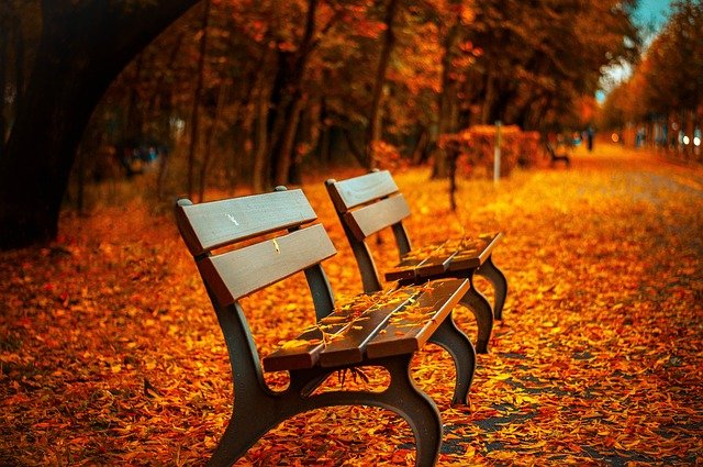 benches-560435_640