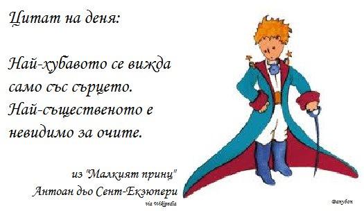 danybon citat 61
