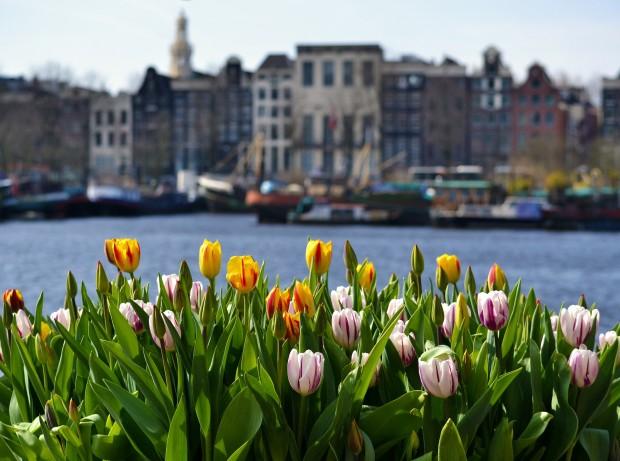 amsterdam-4350882_1920